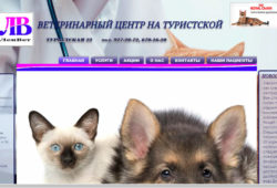 Ветеринарная клиника на Туристской улице - ветклиника ЛенВет