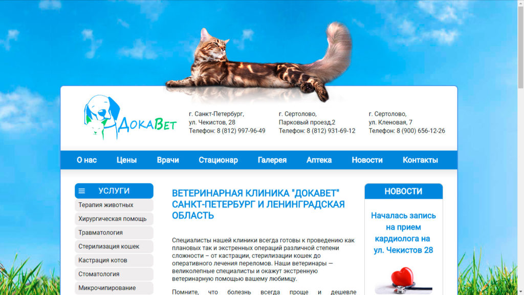 Ветеринарная клиника на Кленовой улице - ветклиника ДОКАВЕТ